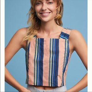 Anthropologie Vineyard Striped Crop Top (B1)